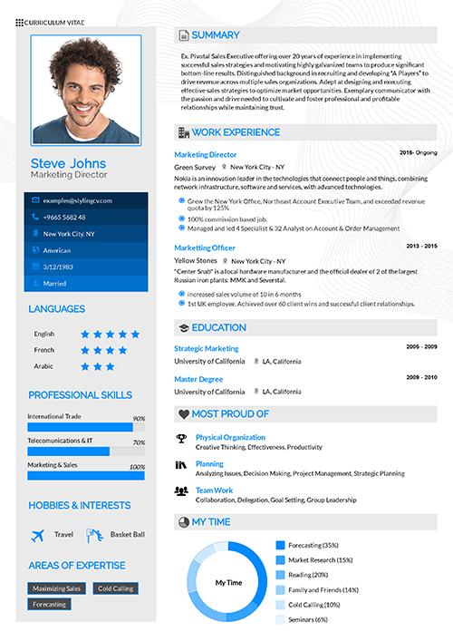 Professional Resume Template KSA