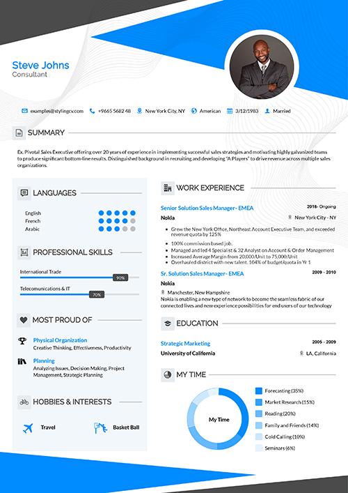 Professional Resume Template Modern