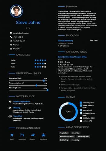 Professional Resume Template Sireva